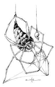 Ogre-faced Spider-Del